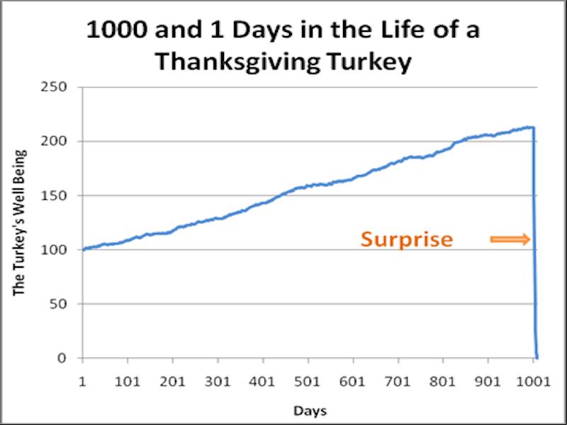 Turkey Illusion (G. Gigerenzer), Thema: Risiko